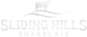 Sliding Hills Charolais